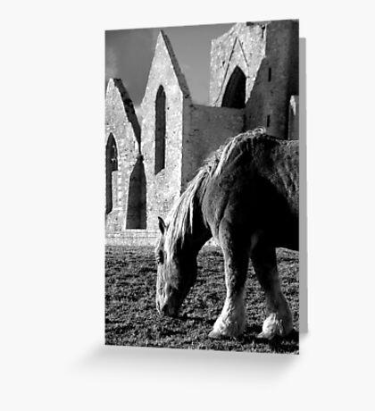 St Mathieu - La chapelle et le cheval Greeting Card