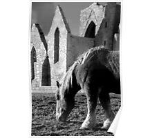 St Mathieu - La chapelle et le cheval Poster