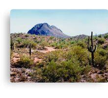Desert Hills Canvas Print