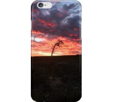 Nature's Rest iPhone Case/Skin
