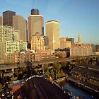 Seattle from the Big Wheel by Mike Cressy