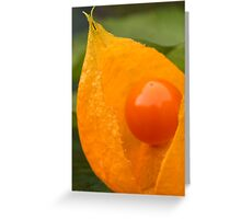 Pearl of the Chinese Lantern Greeting Card