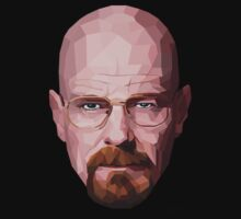 Walter White - Breaking Bad by Angio