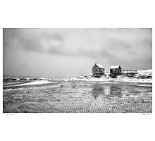 Weathering Shacks Photographic Print