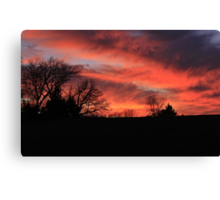 Beauty Defined by Nature Canvas Print