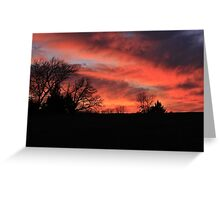 Beauty Defined by Nature Greeting Card