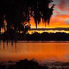 Colorful Lake Sunrise by Douglas Hamilton
