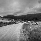 Cobungara Panorama by Natalie Ord
