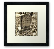 Touch of Foliage Artistic Photograph by Shannon Sears Framed Print