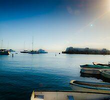 Monterey Boats by Douglas Hamilton