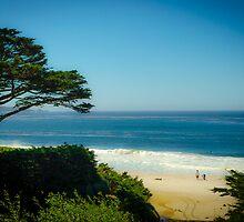 Carmel Landscape by Douglas Hamilton