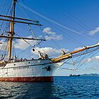 Bowsprit Picton Castle by globeboater
