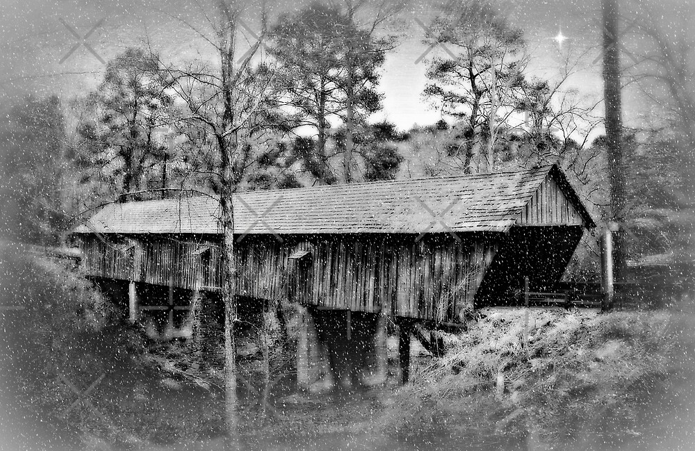 The Old Covered Bridge by Scott Mitchell