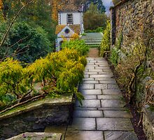 Down The Garden Path by Ian Mitchell