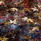 Leaves Jam by Olga Zvereva
