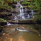 Falls Creek Falls by vilaro Images