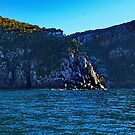 South Bruny seascape - Bruny Island, Tasmania, Australia by PC1134