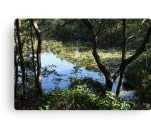 Lake Ray Canvas Print