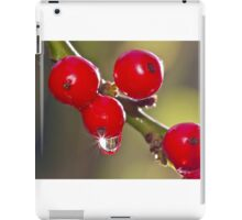 Winter Sparkle iPad Case/Skin