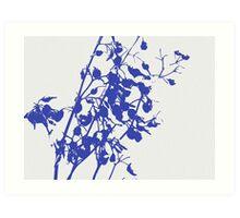 blue dianella berry silhouette  Art Print