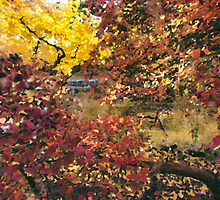 Autumn at the Park by Carrie Cole