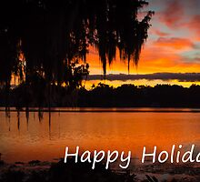 Happy Holidays Colorful Lake Sunrise by Douglas Hamilton