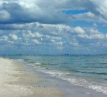 Sanibel Beach by Karen Checca