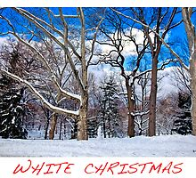 White Christmas by Madeline Bush Ellis