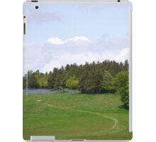 Bakewell #2 iPad Case/Skin