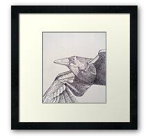 Raven in Flight Framed Print