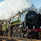BR Britannia Class 7MT 4-6-2 no 70013 Oliver Cromwell by Steve  Liptrot