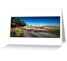 Sheep Farmer Greeting Card