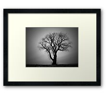 Out Of This Earth Framed Print