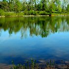Kemper Park Lake     ^ by ctheworld
