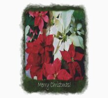 Mixed color Poinsettias 1 Merry Christmas P1F5 Kids Clothes