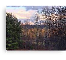 A Front Yard View Canvas Print