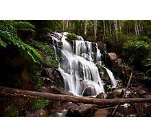 Toorongo Falls Photographic Print