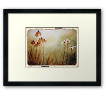 Watercolour Daisies - on film Framed Print