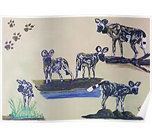African Wild Dog Montage. By Jane Flowers Poster