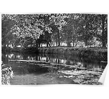 THE RIVERBANK Poster