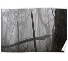 Cleland fog - monochrome - 02 Poster