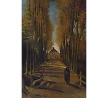 Vincent Van Gogh - Avenue of poplars in autumn, 1884 Photographic Print