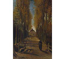 Vincent Van Gogh - Avenue of poplars in autumn, 1884 Photographic Print