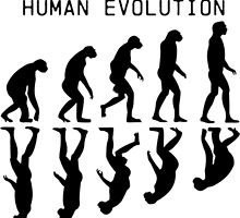 Human Evolution by s3kdesigners