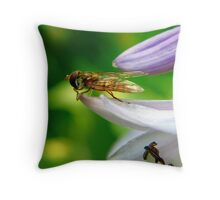 Hoverfly on leaf ready for takeoff Throw Pillow