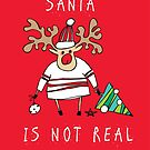 Santa is not real by Tatiana Ivchenkova