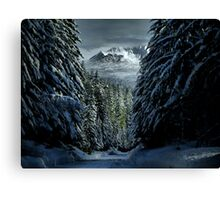 It's A Cold World ~ Three Fingered Jack ~ Canvas Print