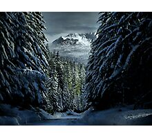It's A Cold World ~ Three Fingered Jack ~ Photographic Print