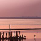 Old Pier by Roger Otto