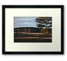 Corporate Landscape Framed Print